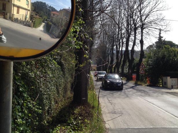 Francigena risky road