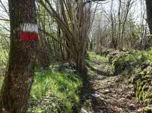 Via Francigena CAI sign