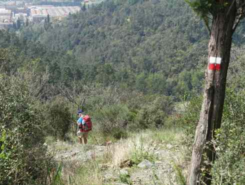 Via Francigena down hill