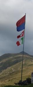 flag  ticino