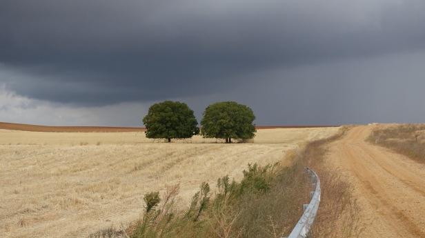via de la  plata granja