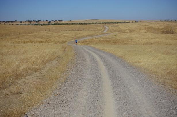 Via de la Plata