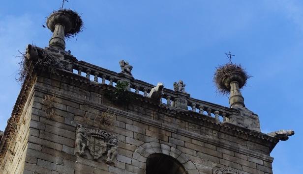 stork nests via de la plata