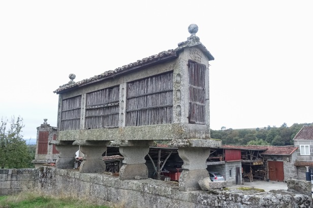 Via Sanabrés Camino Hórreo
