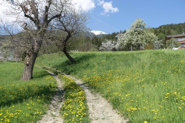 Via Romea Germanica Alto Adige sudtirol