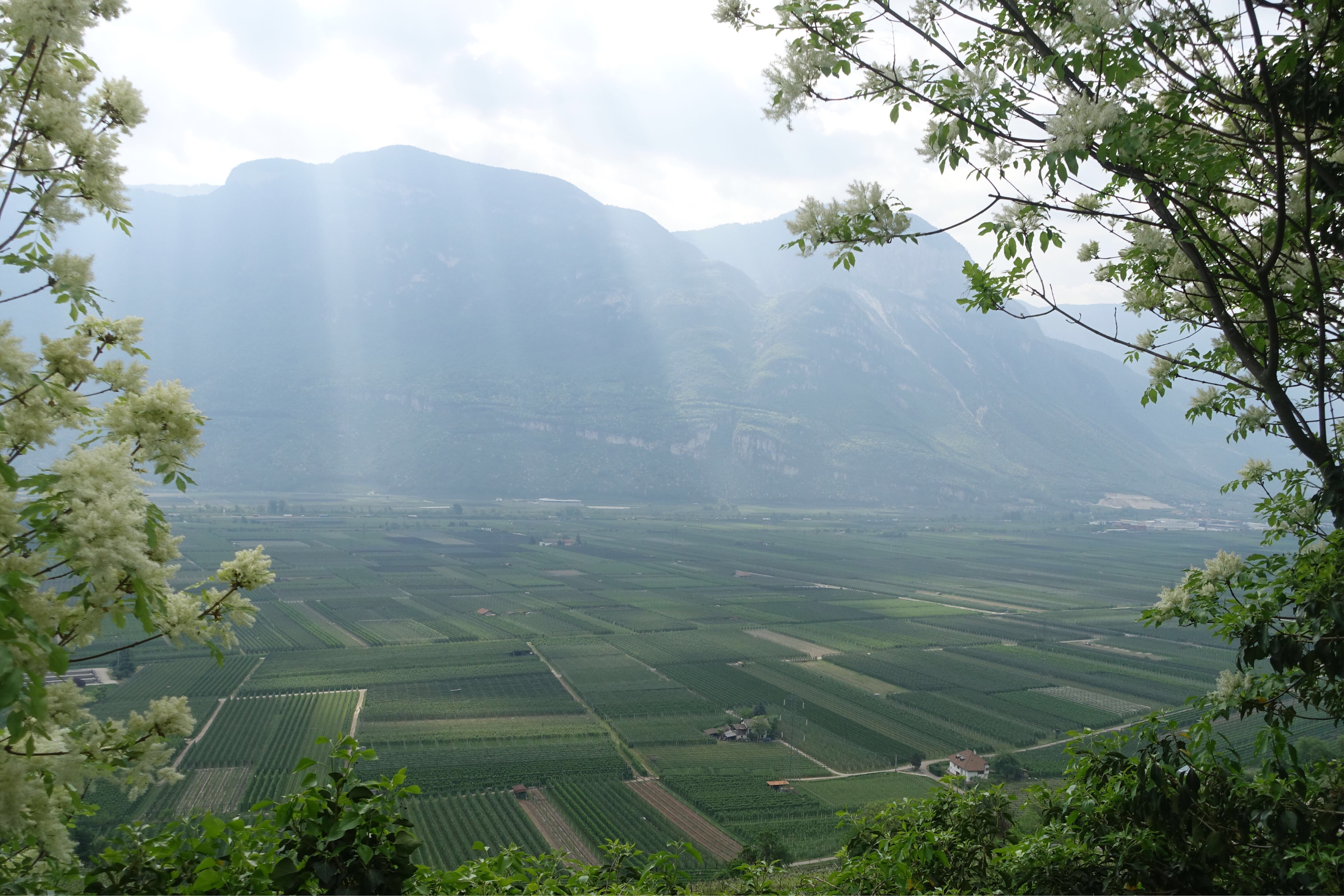 Via Romea Germanica Alto Adige