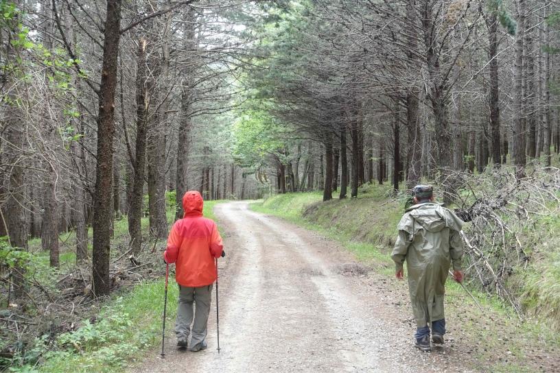 Santa Sofia – Bagno di Romagna May 15 – Paul\'s Walks Through Europe