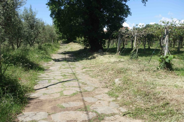 Via Romea Germanica cassia Montefiascone Roman road